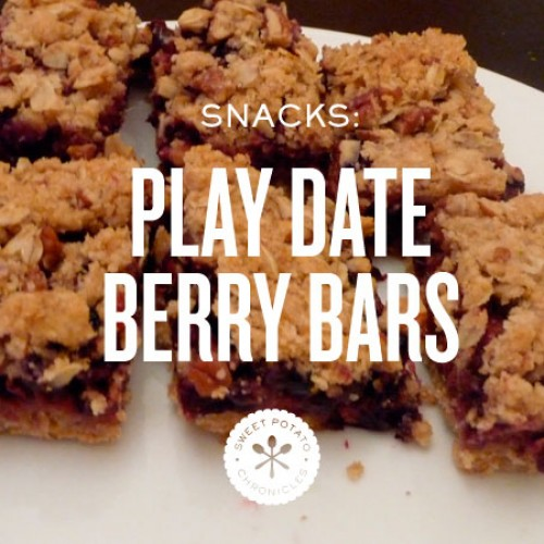 Blueberry Nut Bars
