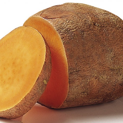 What's So Great About Sweet Potato?