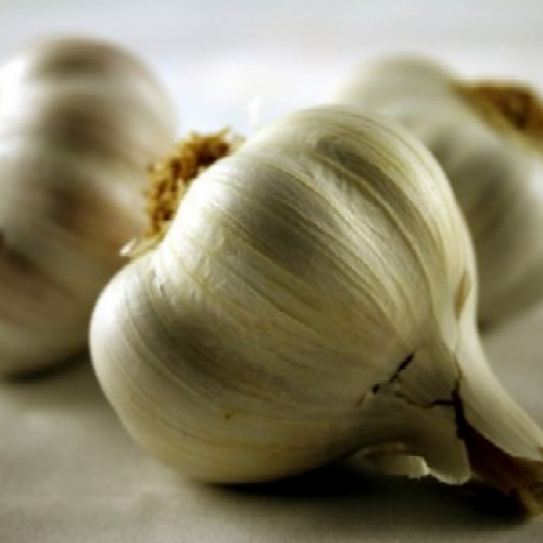 What's So Great About…Garlic