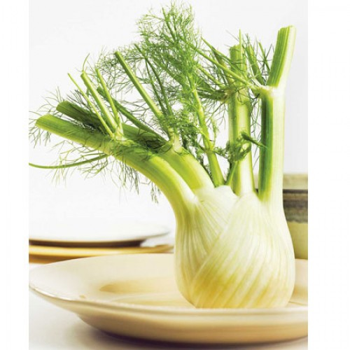 What's So Great About Fennel?