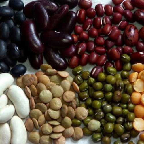 Chef Notes: Dried Beans