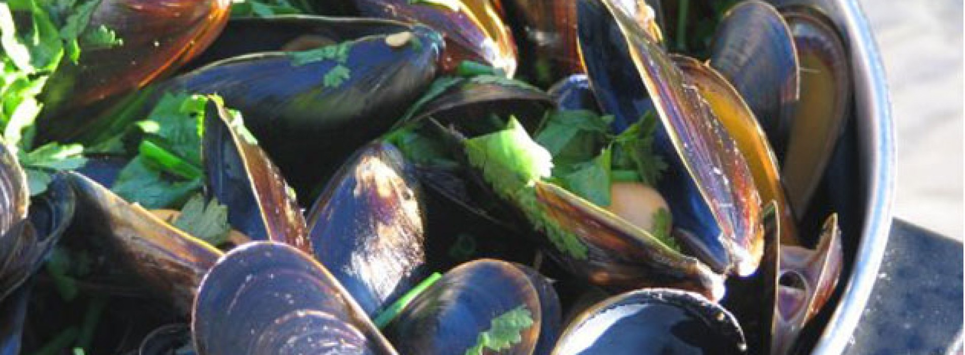 Chef Notes: Mussels