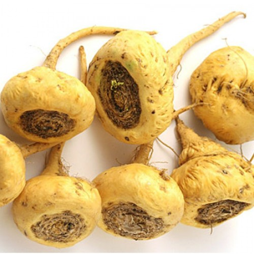 What's So Great About Lepidium Meyenii (Maca Root)?