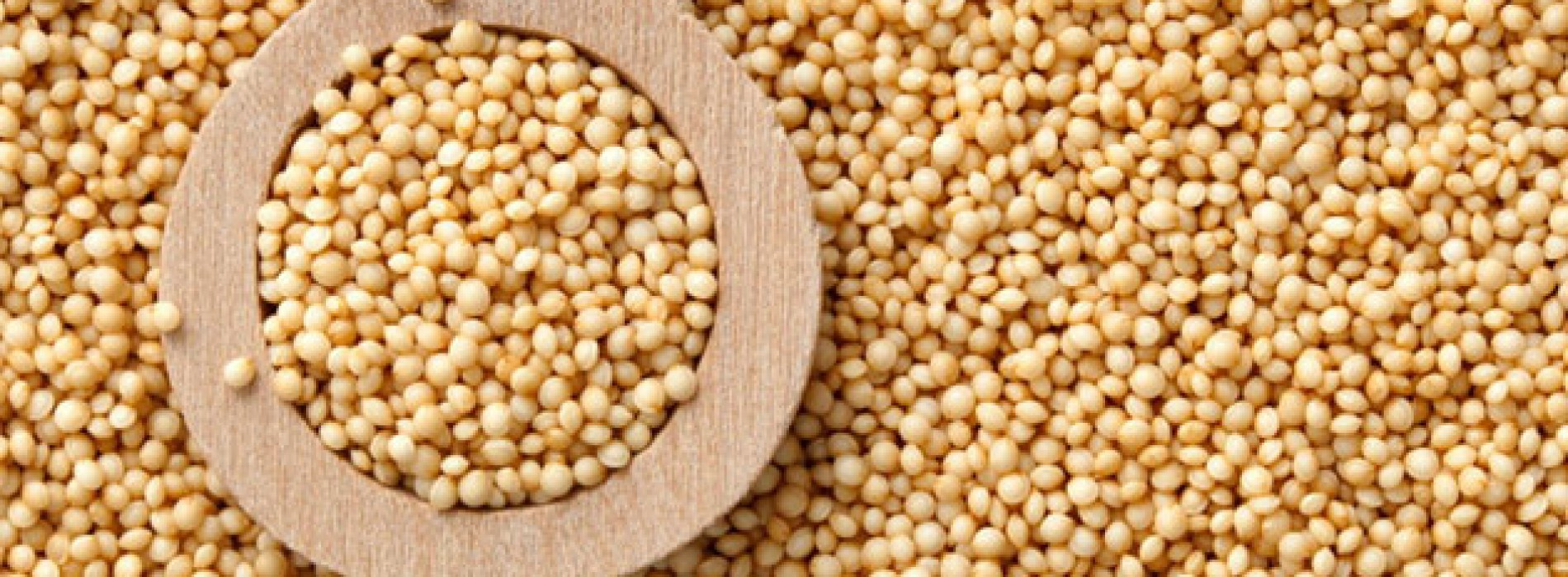 What's So Great About Amaranth?