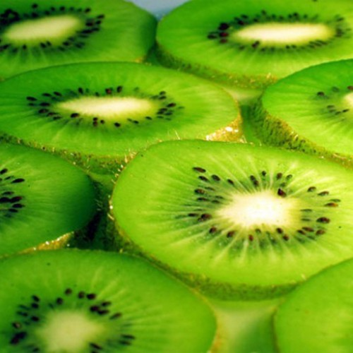 What's So Great About Kiwi?